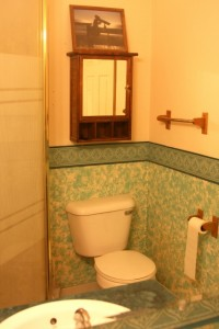 Looking toward the shower and toilet in the old bathroom