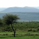 On the way to Harar